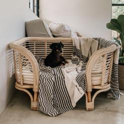 Paws Pet Bed - Medium